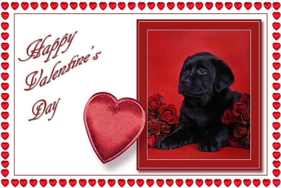 Labrador Valentine Card 2 by Waldek Dabrowski - Labrador Valentine ...