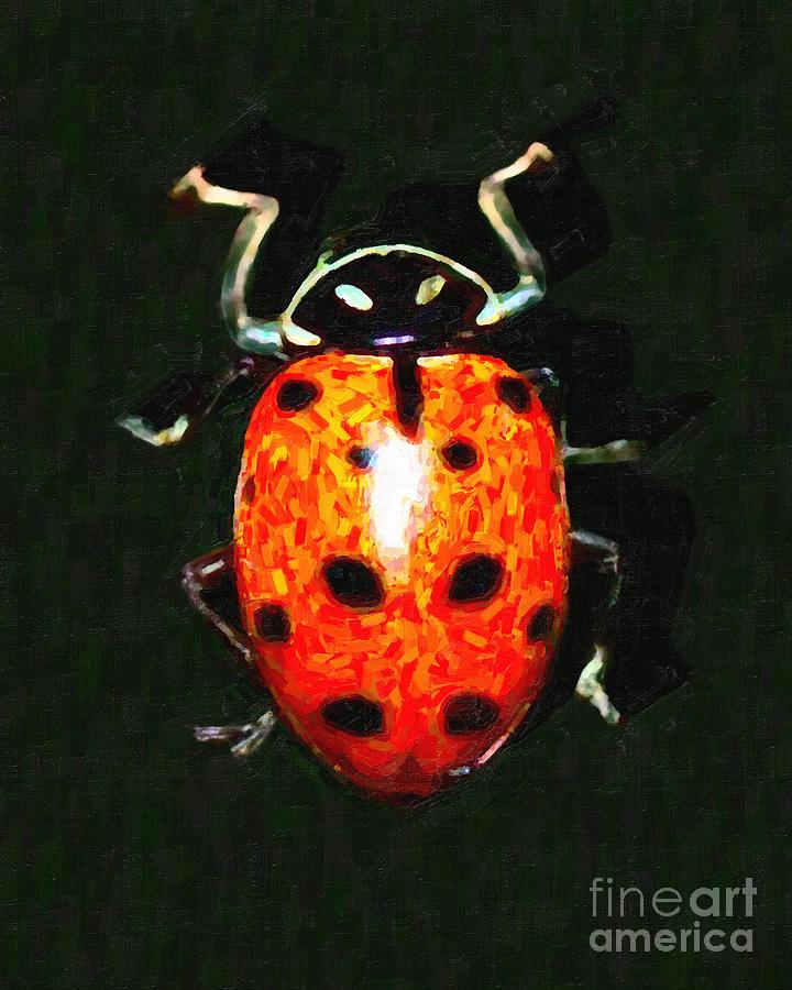 Ladybug Photograph - Ladybug by Wingsdomain Art and Photography