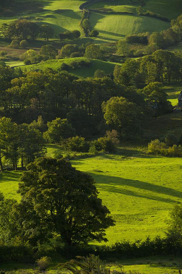 Lake District National Park, Cumbria Photograph