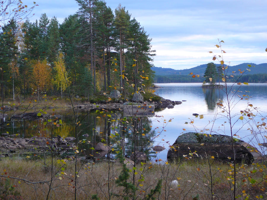 Lake Gustav Sweden Photograph