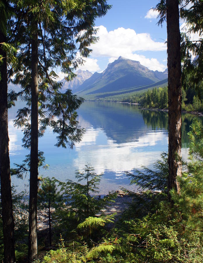 Lake Mcdlonald Through The Trees Glacier National Park Photograph  - Lake Mcdlonald Through The Trees Glacier National Park Fine Art Print