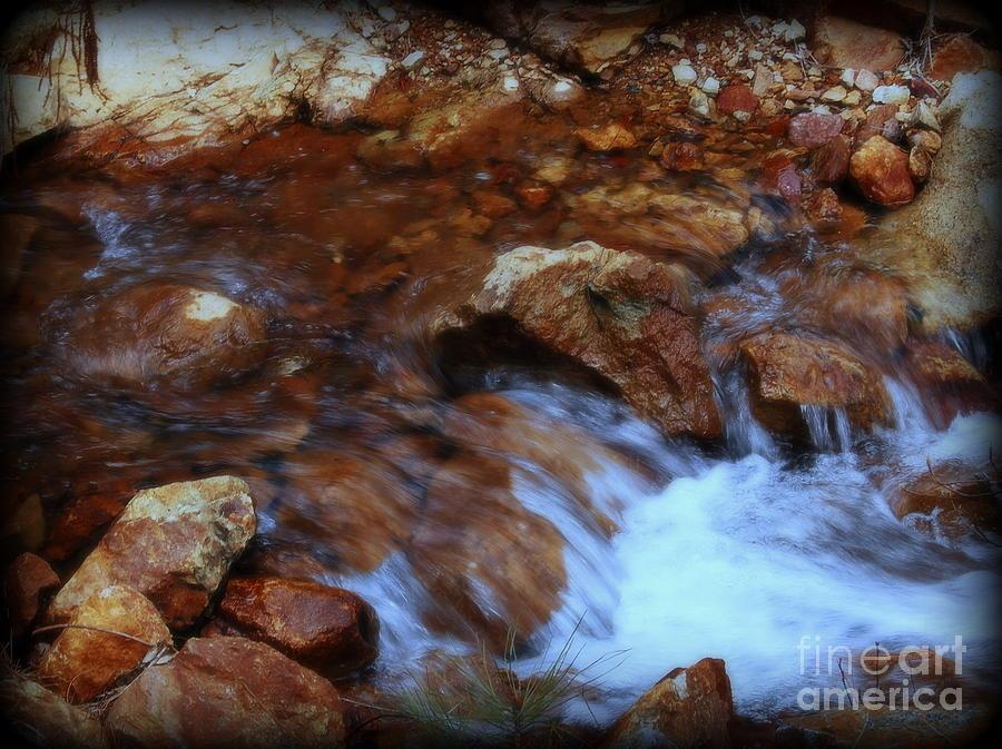 Garnett Jaeger Photograph - Lake Shasta Waterfall  by Garnett  Jaeger