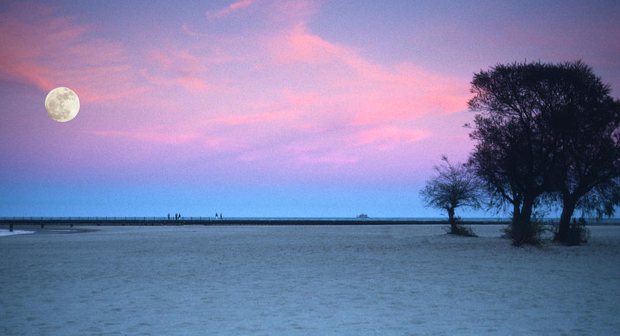 Lake Shore Evening Photograph