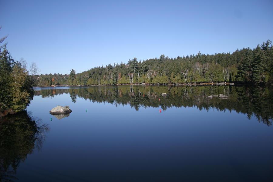 Lake Side View Photograph