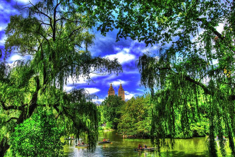 Lakeboat In Central Park Too Photograph  - Lakeboat In Central Park Too Fine Art Print