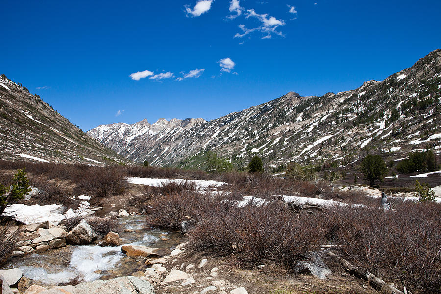 Lamoille Canyon In July Photograph
