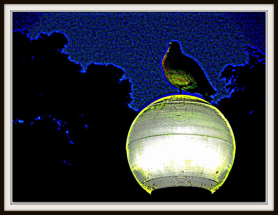 Lamp And The Bird Photograph  - Lamp And The Bird Fine Art Print