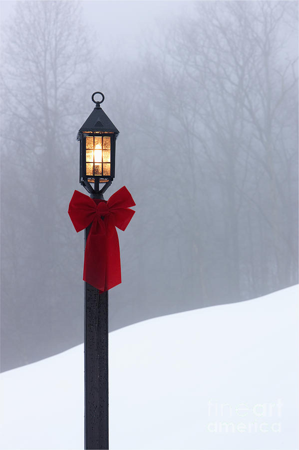 Lamppost In Snow Photograph