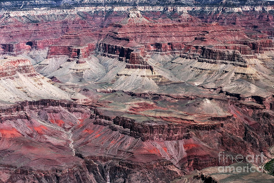 Landing In The Canyon Photograph