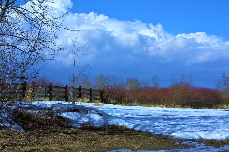 Landscape  Snow Scene Photograph
