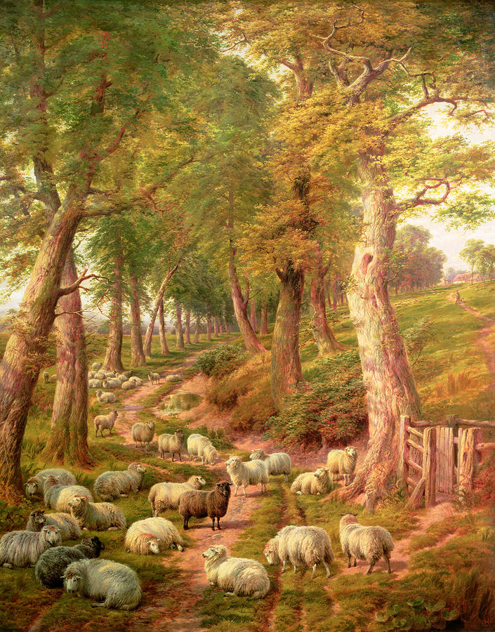 Landscape With Sheep Painting
