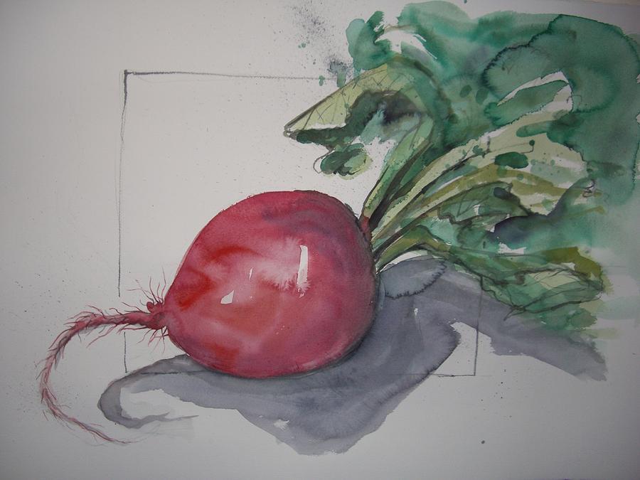 Large Image Of Single Radish. Painting - Large Radish by Barbara Spies