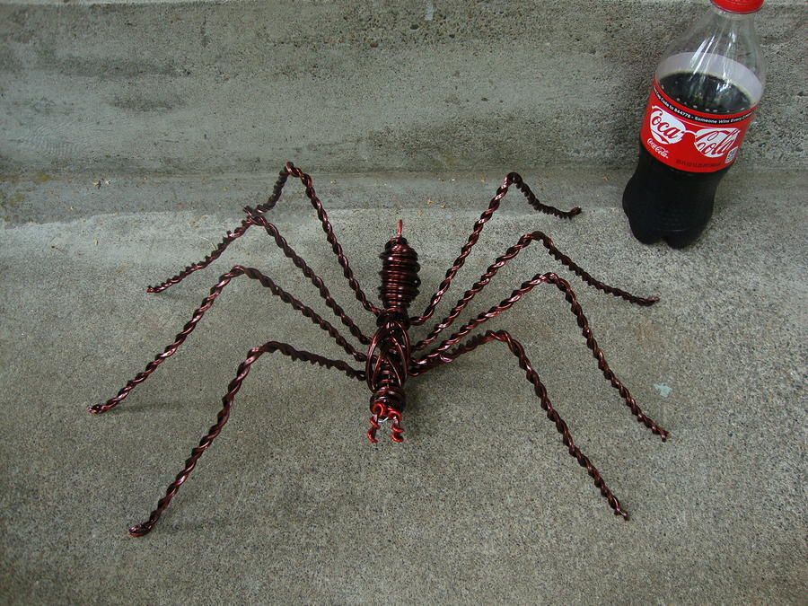 Large Wire Spider Next To 20oz Soda Sculpture