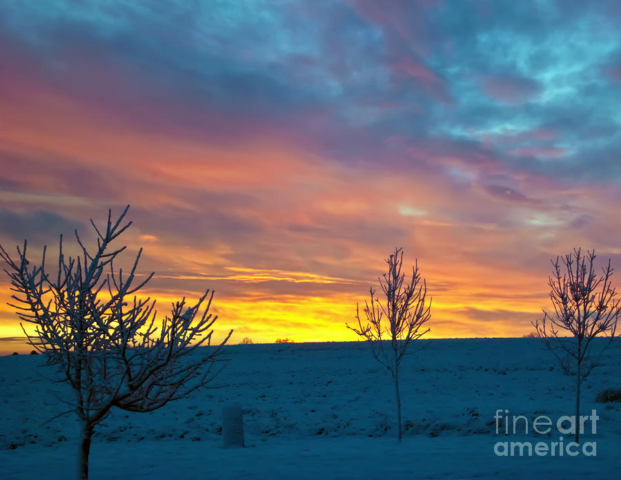 Larimer County Winter Sunrise Photograph