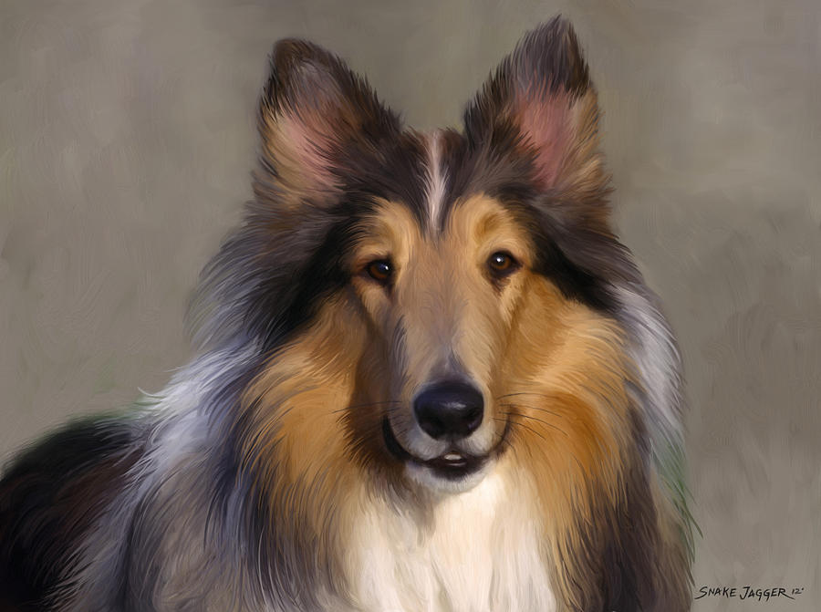 Dog Painting - Lassie Come Home by Snake Jagger