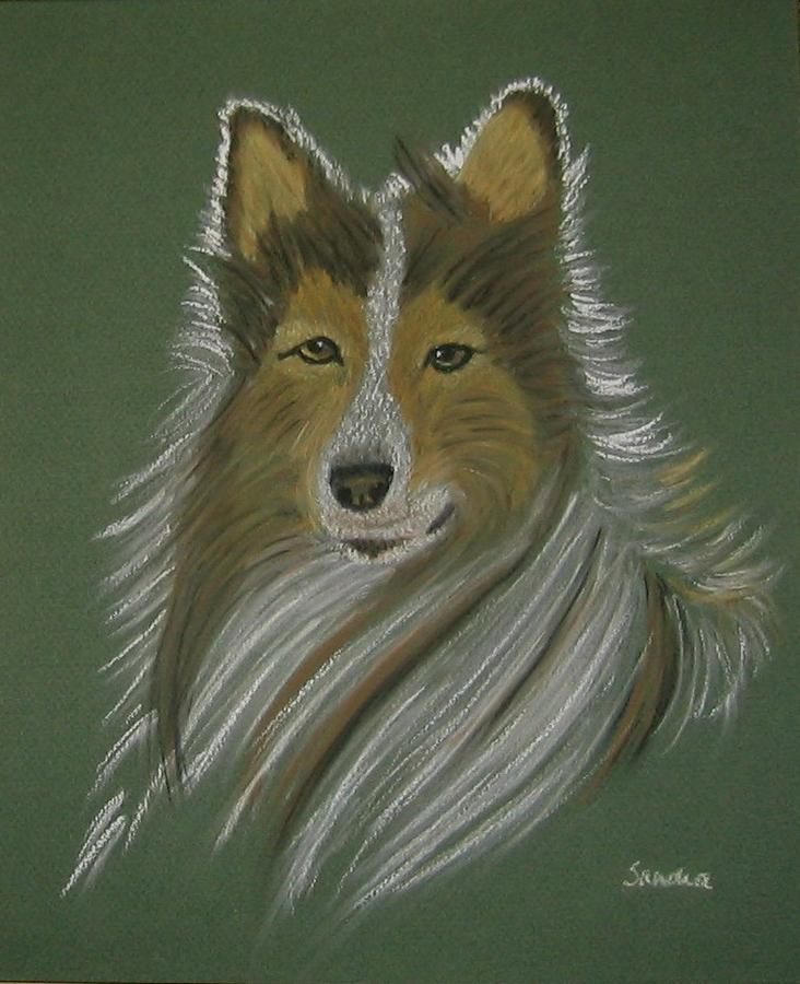 Lassie Pastel