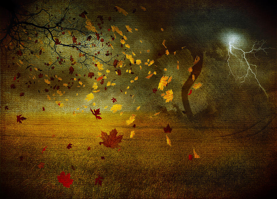 Late October Digital Art  - Late October Fine Art Print
