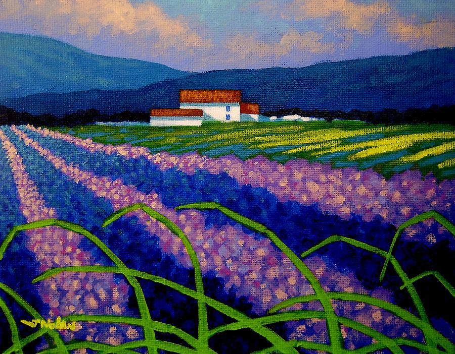 Lavender Field France Painting  - Lavender Field France Fine Art Print