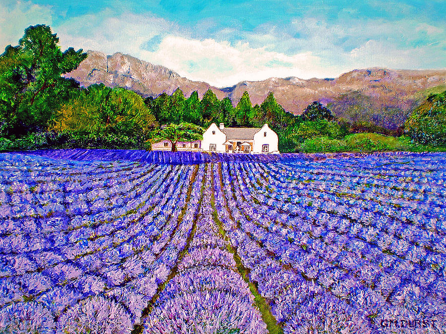 Lavender Fields Painting  - Lavender Fields Fine Art Print