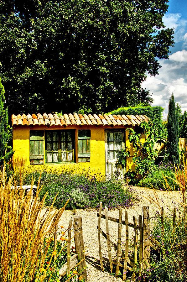 Le Jardin De Vincent Photograph