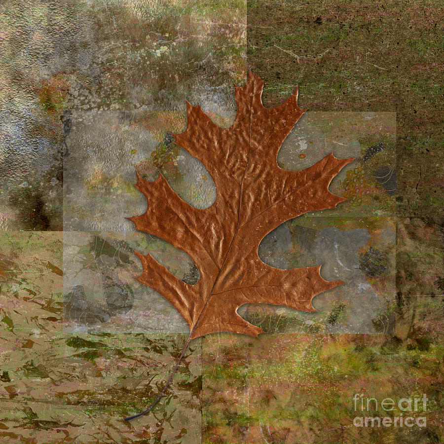 Leaf Life 01 -brown 01b2 Digital Art  - Leaf Life 01 -brown 01b2 Fine Art Print