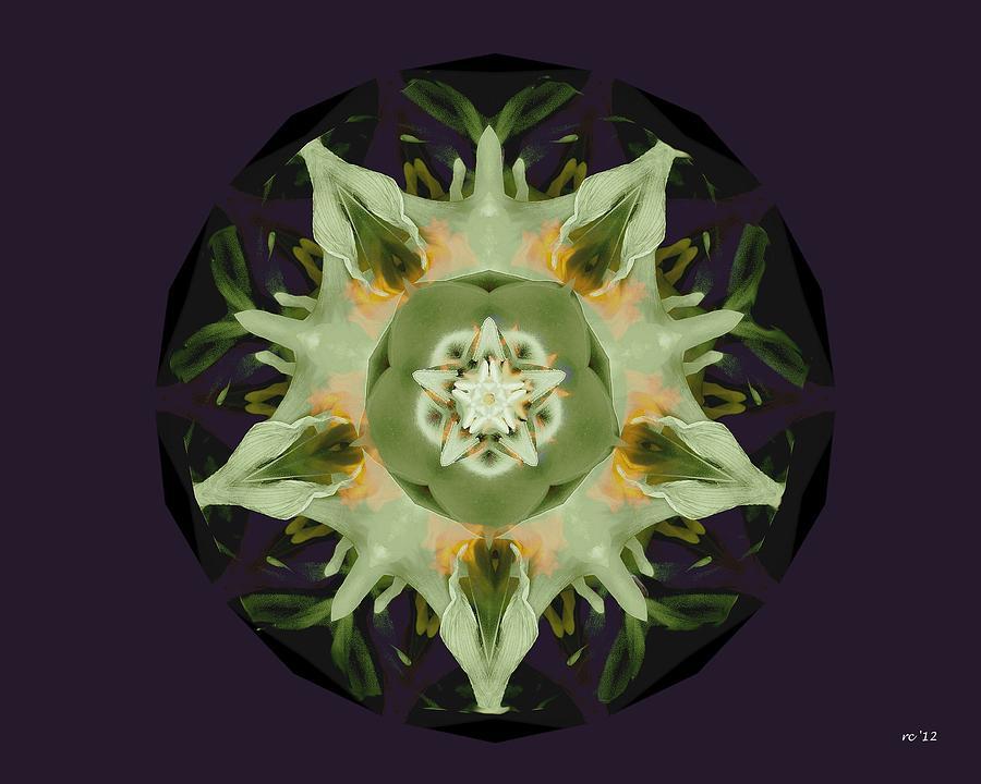 Leafy Mandala Photograph