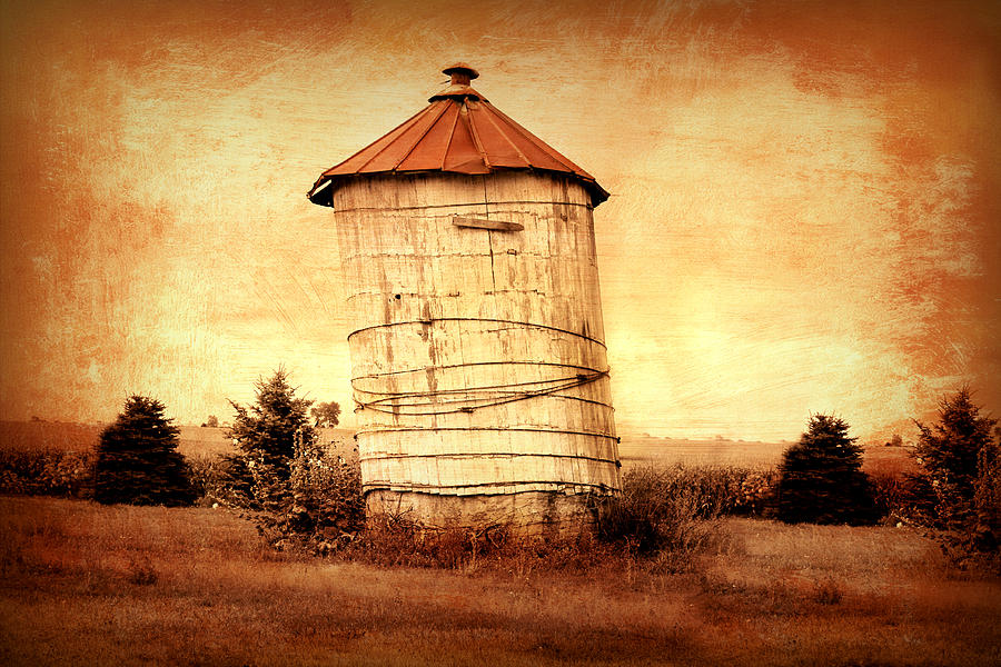 Leaning Tower Photograph  - Leaning Tower Fine Art Print