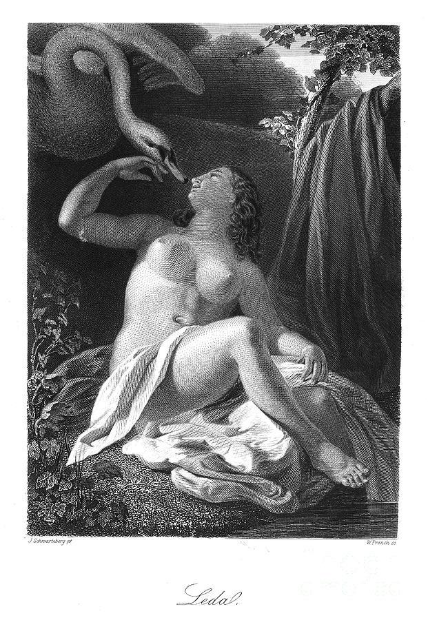 Leda And The Swan Photograph