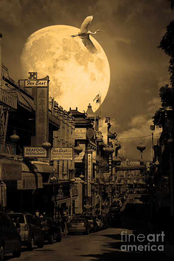 Legend Of The Great White Phoenix Of Chinatown . 7d7172 . Sepia Photograph  - Legend Of The Great White Phoenix Of Chinatown . 7d7172 . Sepia Fine Art Print