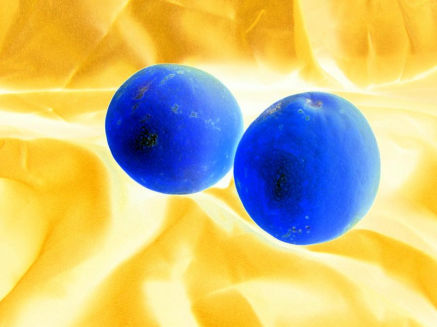 Lemon Blue Photograph