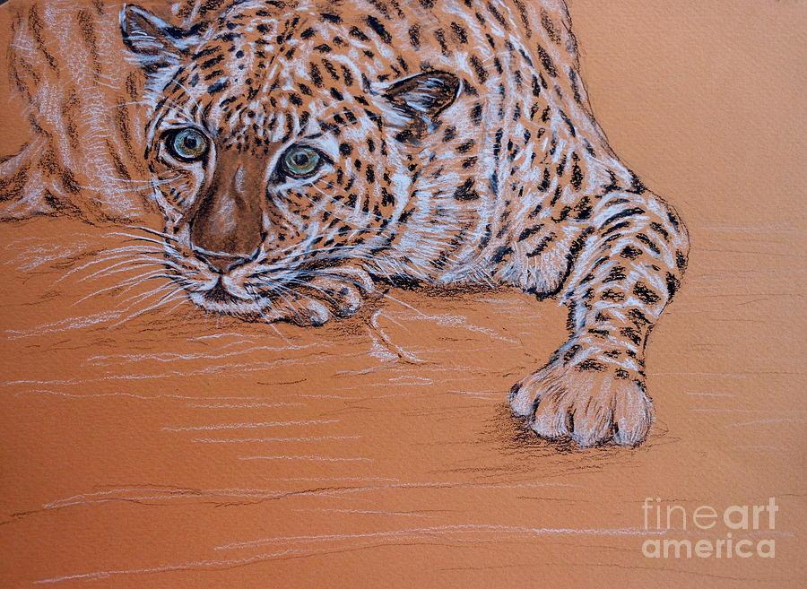 Leopard 1 Pastel