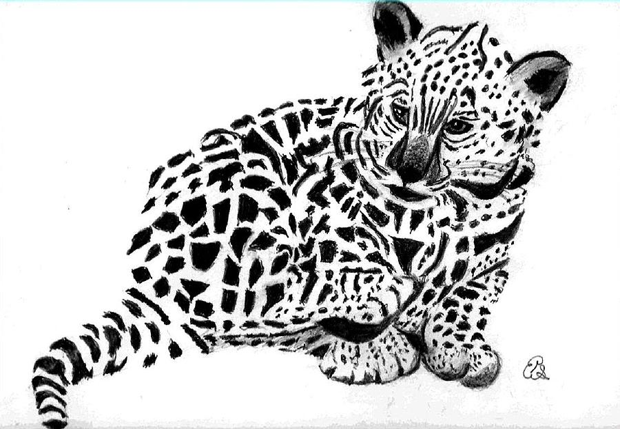 how to draw leopard print with pencil