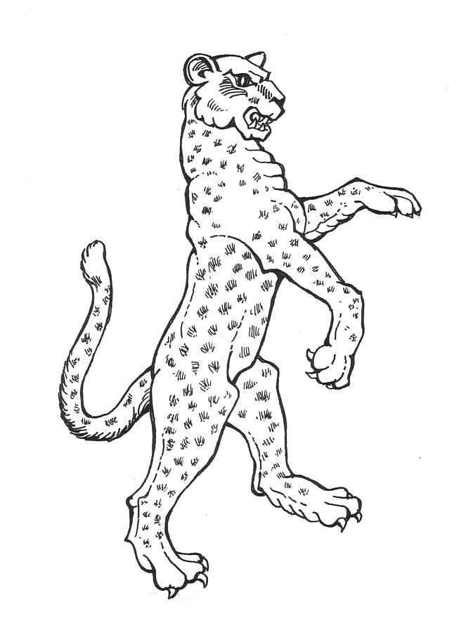 Baby leopard drawing