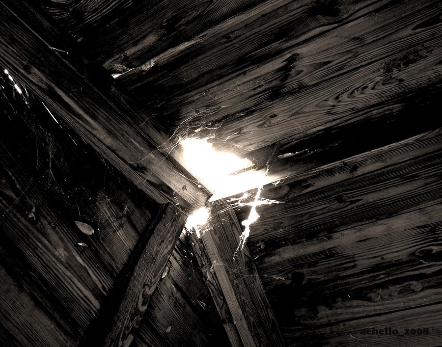 Let There Be Light Photograph  - Let There Be Light Fine Art Print