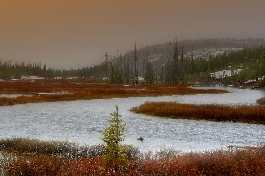 Yellowstone Photograph - Lewis River - Yellowstone National Park by Ellen Heaverlo