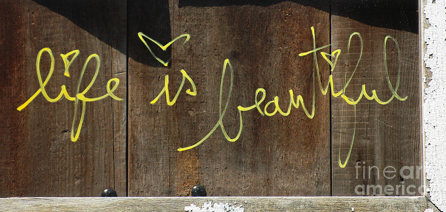 Life Is Beautiful Graf Photograph  - Life Is Beautiful Graf Fine Art Print