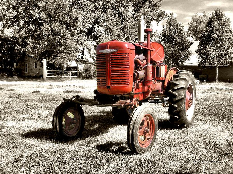 Life On The Farm Photograph
