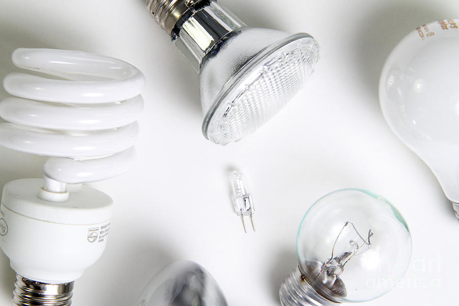 Light Bulbs Photograph  - Light Bulbs Fine Art Print