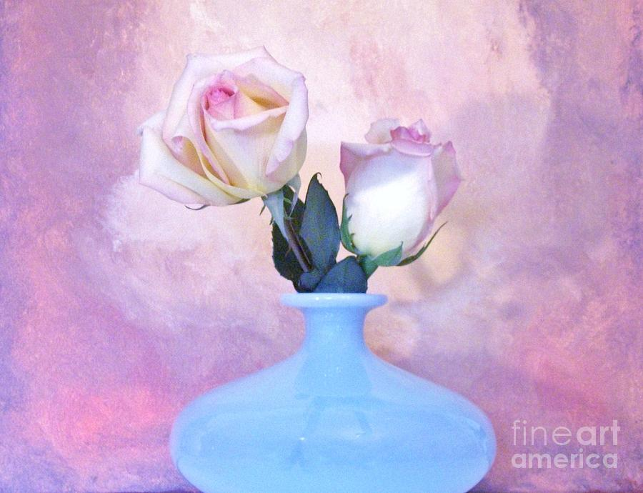 Light Pink Tipped Roses Photograph  - Light Pink Tipped Roses Fine Art Print