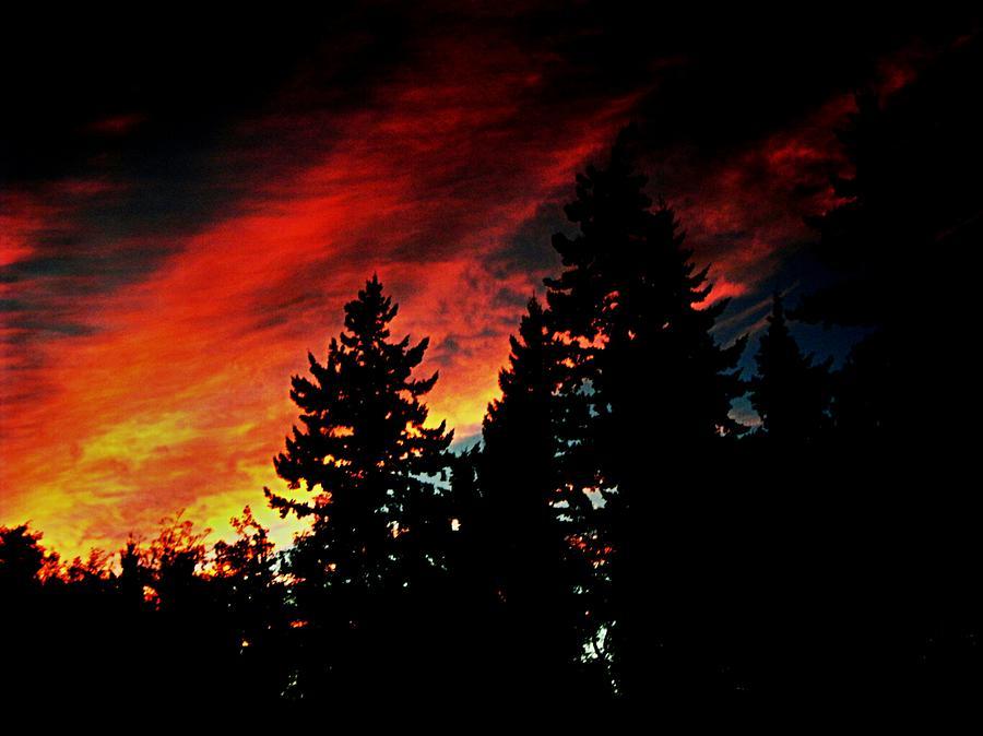 Light The Fire II Photograph