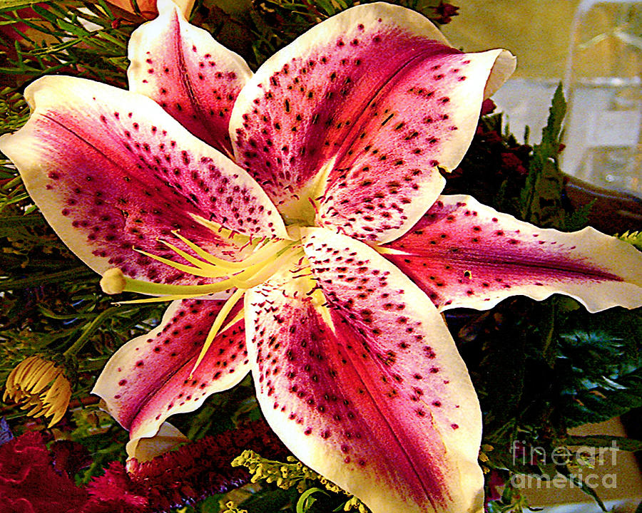 Lily Bouquet Arrangement Photograph  - Lily Bouquet Arrangement Fine Art Print