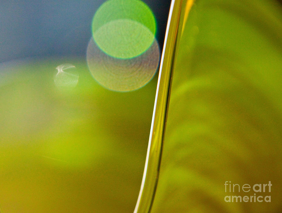 Lime Abstract Two Photograph  - Lime Abstract Two Fine Art Print