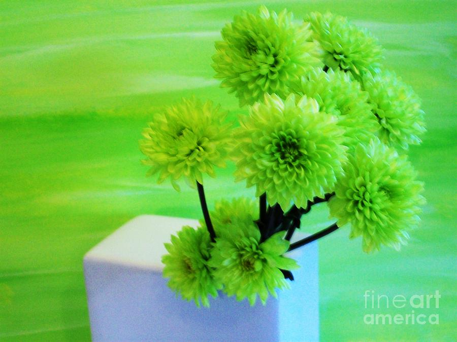 Lime Flowers Photograph