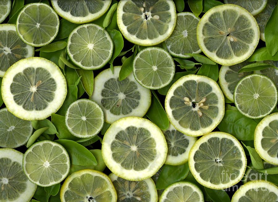Limons Photograph