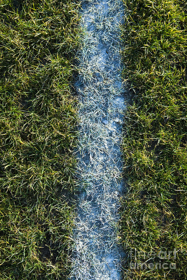 Line On Artificial Turf Photograph