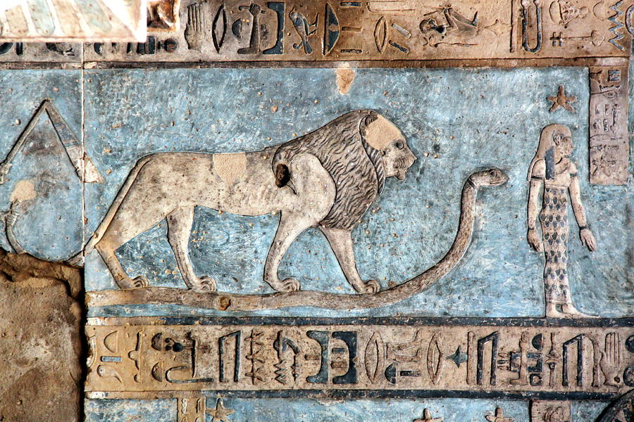 Lion At Dendera, Egypt Photograph