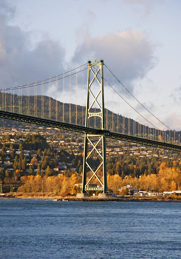 Lions Gate Bridge Vancouver Photograph  - Lions Gate Bridge Vancouver Fine Art Print