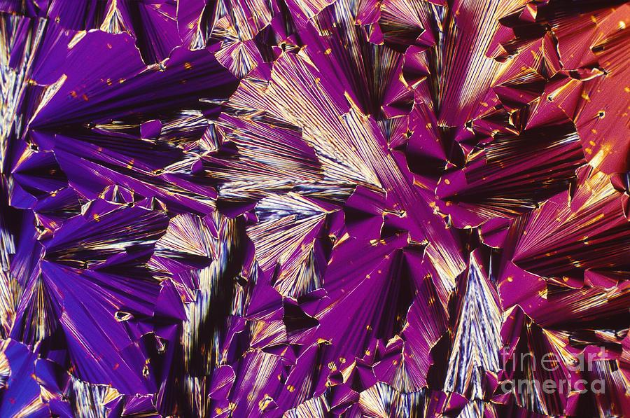 Liquid Crystalline Dna Photograph