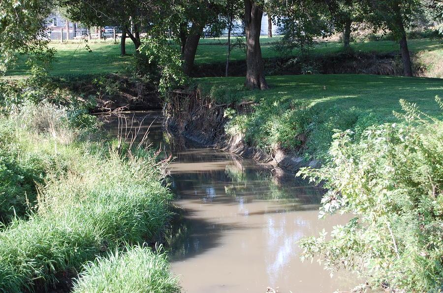 Little Creek Photograph