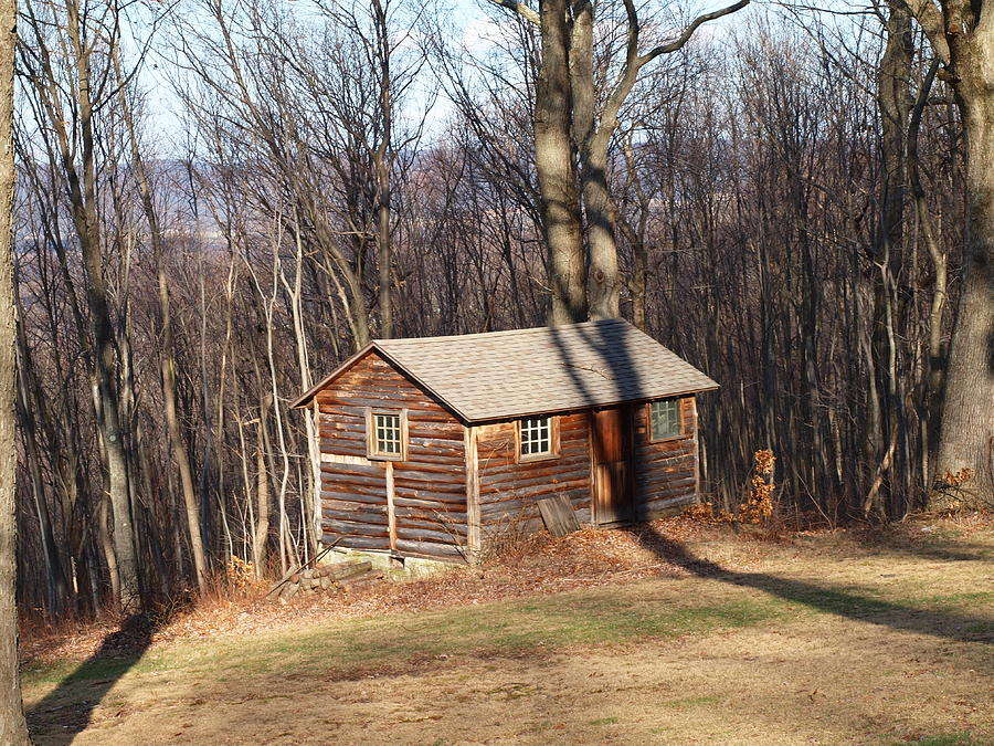 Little House In The Woods Photograph